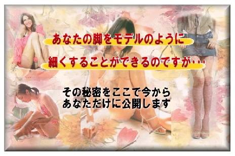 美脚パーフェクトプログラム 三橋麻美 脚やせ 口コミ.jpg